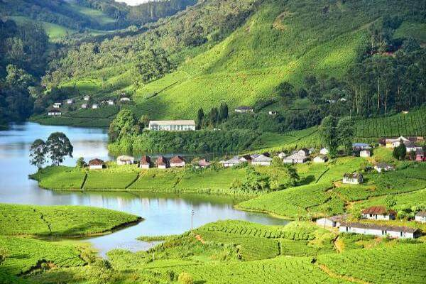 Munnar Hillstation Kerala Tourist Attraction